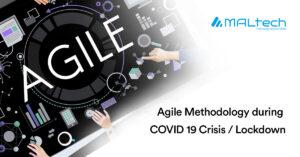 Agile Methodology during COVID-19 Crisis / Lockdown